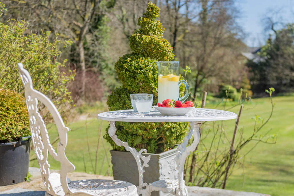 A jug of lemonade and bowl of strawberries on a garden table overlooking a garden
